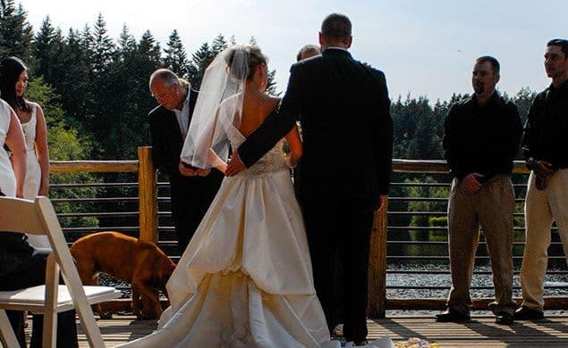 lakedale-weddings-07-635x390