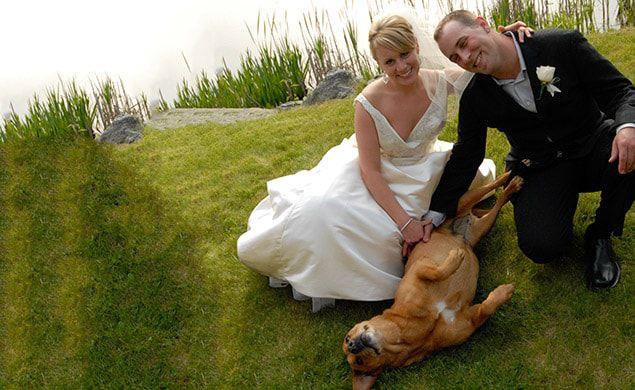 lakedale-weddings-09-635x390