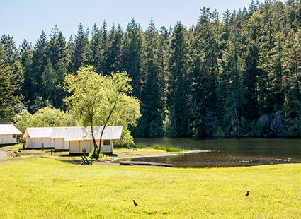 Lakedale's luxury glamping