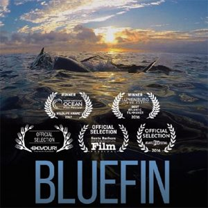 Bluefin movie poster