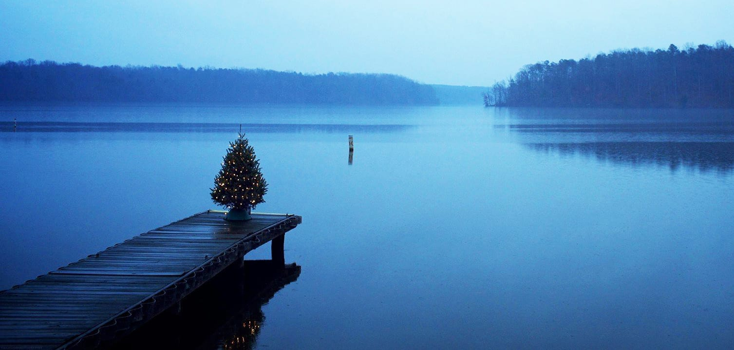 Christmas tree sitting on a lakeside dock