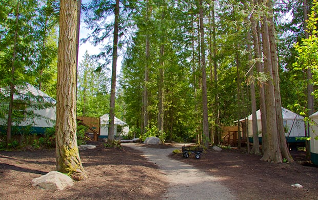exterior pathway to yurts at 620