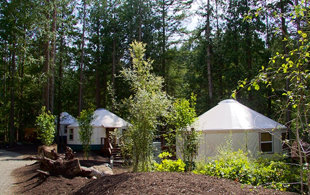 exterior with 3 yurts at 620
