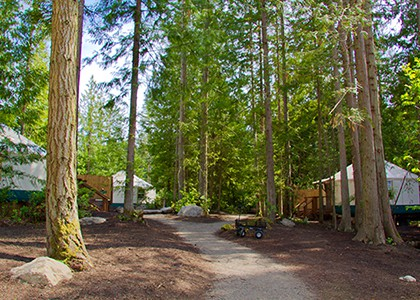 exterior pathway to yurts at 420
