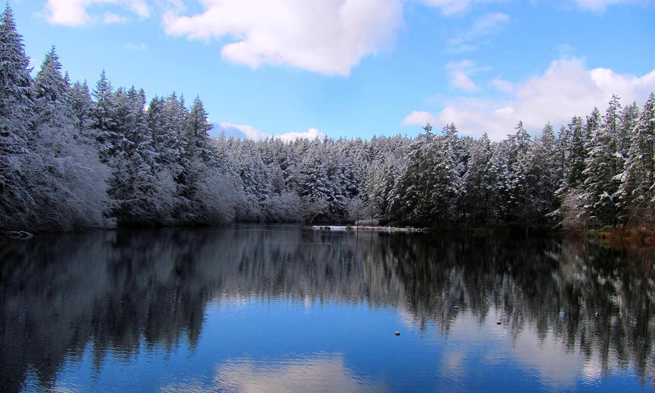 Neva Lake in winter
