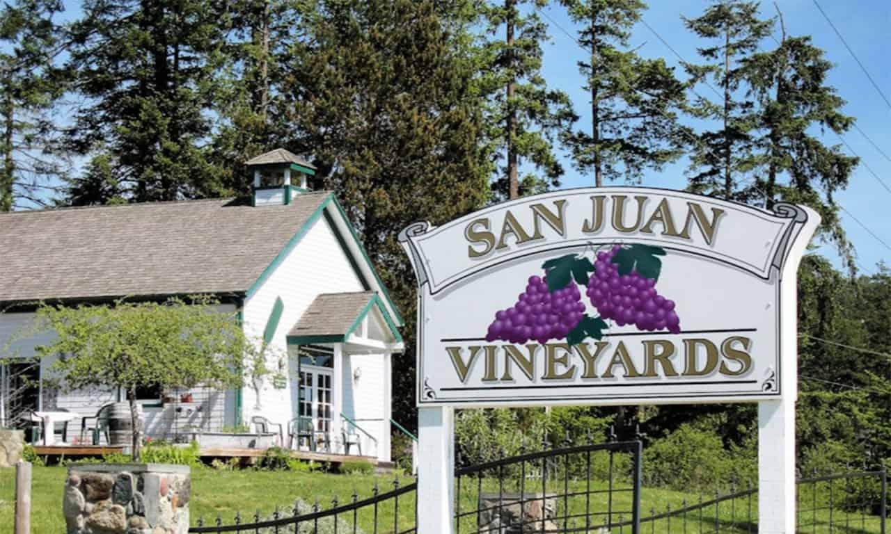 1280 San Juan Vineyards