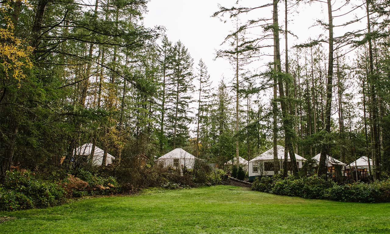 1280 Yurts from meadow_JaneGPhoto