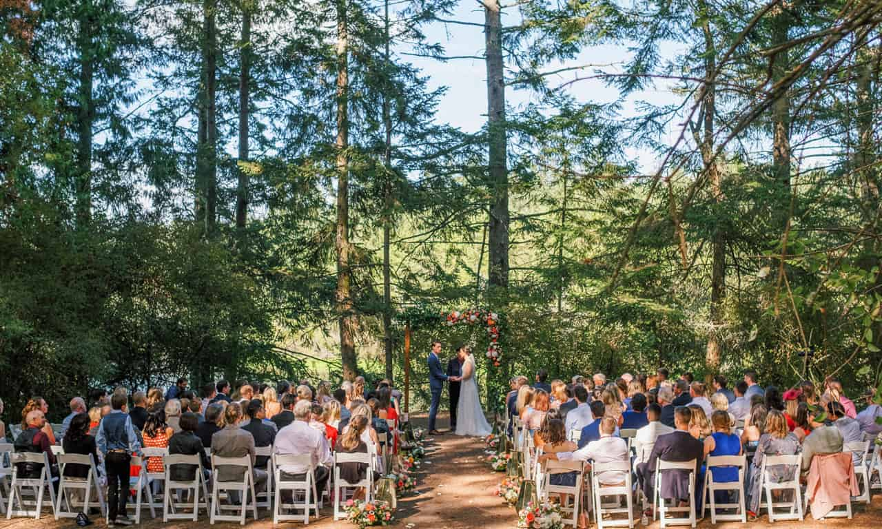 1280 large wedding in tall trees