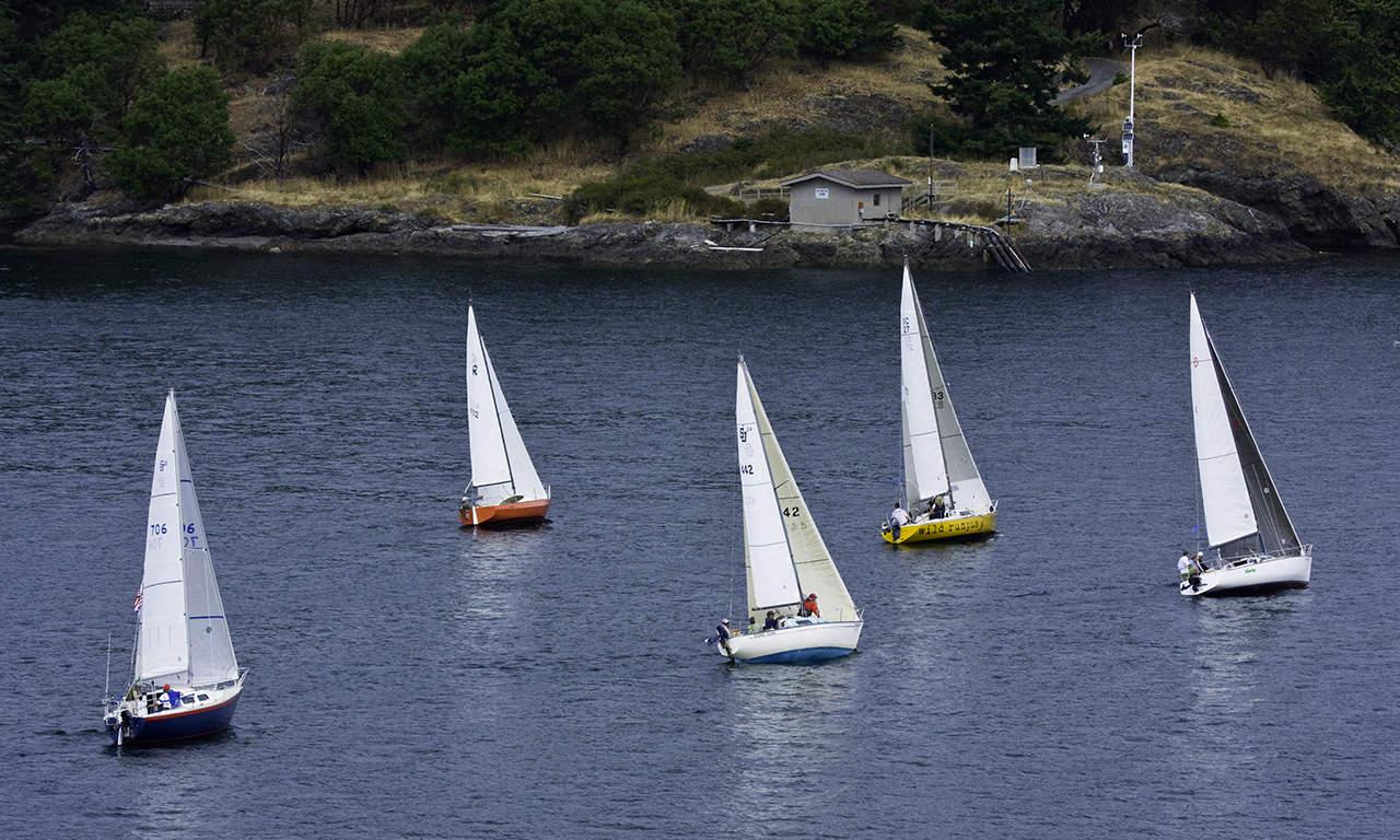 1280 sailboats