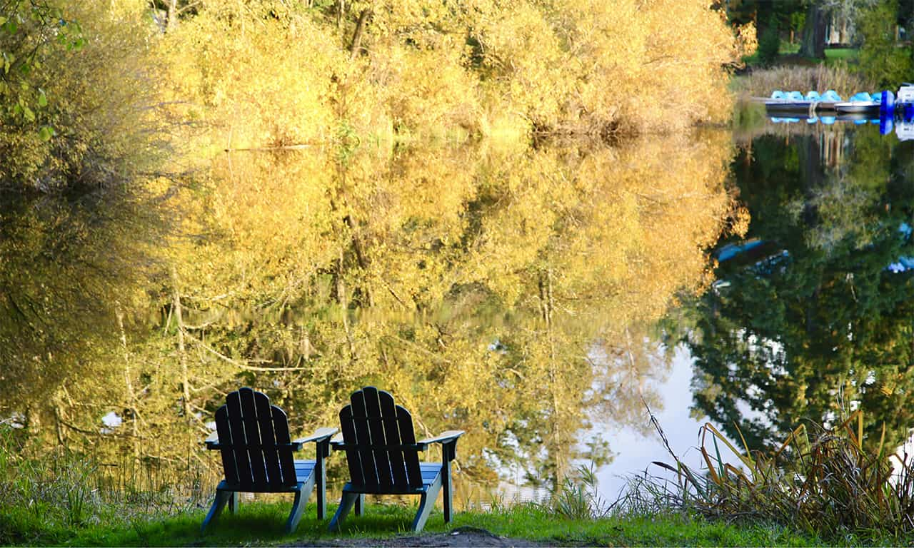 Fall leaves and Adirondack chairs at Lakedale Resort