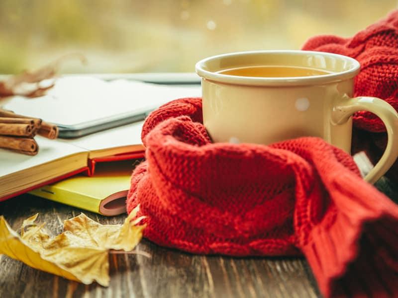 cup of tea in fall from Tea Salish Sea