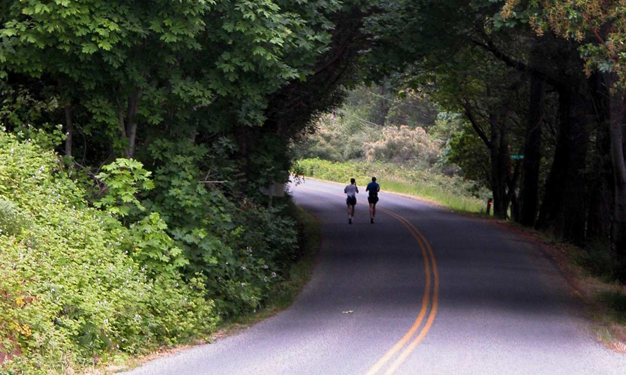 runners-on-road-in-trees