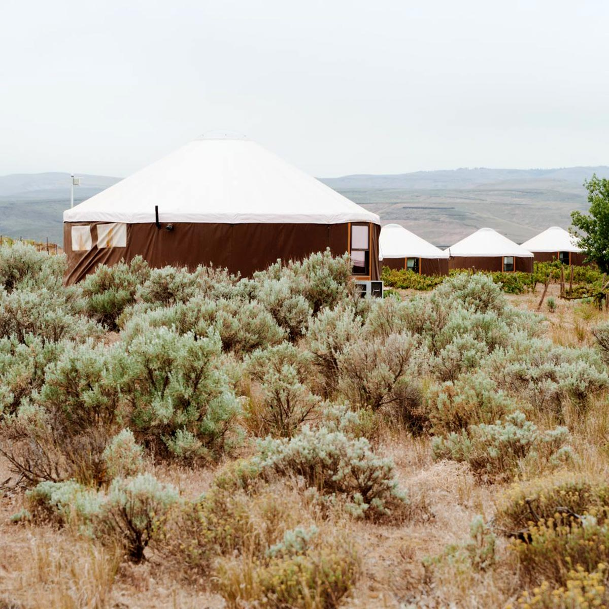 Cave B Yurts